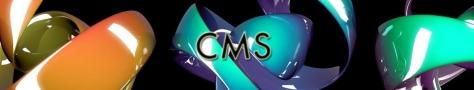 CMS - Formation informatique et ressources humaines - JL Gestion - bruxelles