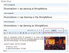 Qtranslate sur WordPress - formation informatique et ressources humaines - JL Gestion - bruxelles