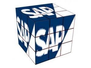 Rubix cube SAP - formation informatique et ressources humaines - JL Gestion - bruxelles