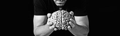 Cerveau - formation informatique et ressources humaines - JL Gestion - bruxelles