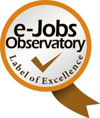 e-jobs observatory for excellence in e-jobs, e-skills and e-competencies