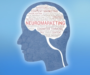 JL Gestion neuromarketing formation informatique bruxelles