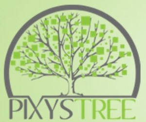 logo-pixystree-formation-informatique-bruxelles